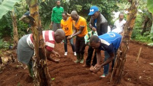 20 Farmers Schooled On Bare Root Creation In Nwasah Village, Lebialem
