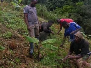 Bangem Farmers Reap Fruits Of Bio-Farming Technology
