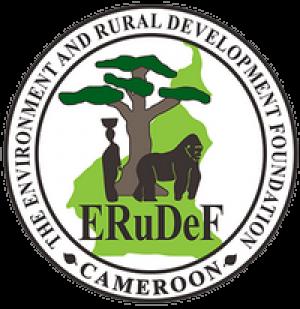 Recruitment of Interns at ERuDeF
