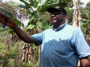EIBiNS Trainees Learn Agro-forestry At IRAD