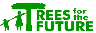 Trees for the Future Cameroon in partnership with ERuDeF launch the 2013 Best Agro-forestry Farms Awards