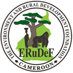 IT SPECIALIST NEEDED AT ERuDeF