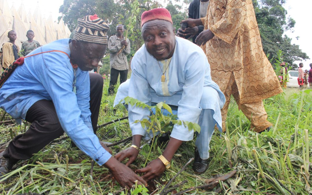 Bangang Celebrates Maiden Trees Day, Over 1000 Trees Planted